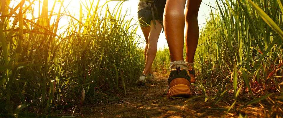 May 2019: WellPATH Spotlight - Get Moving – Start with Just 30 Minutes a Day